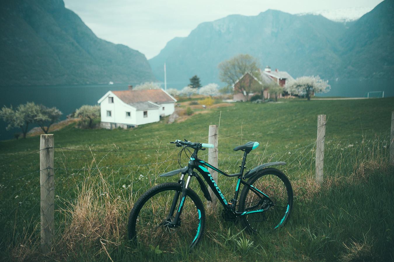 rower Kross, Aurland