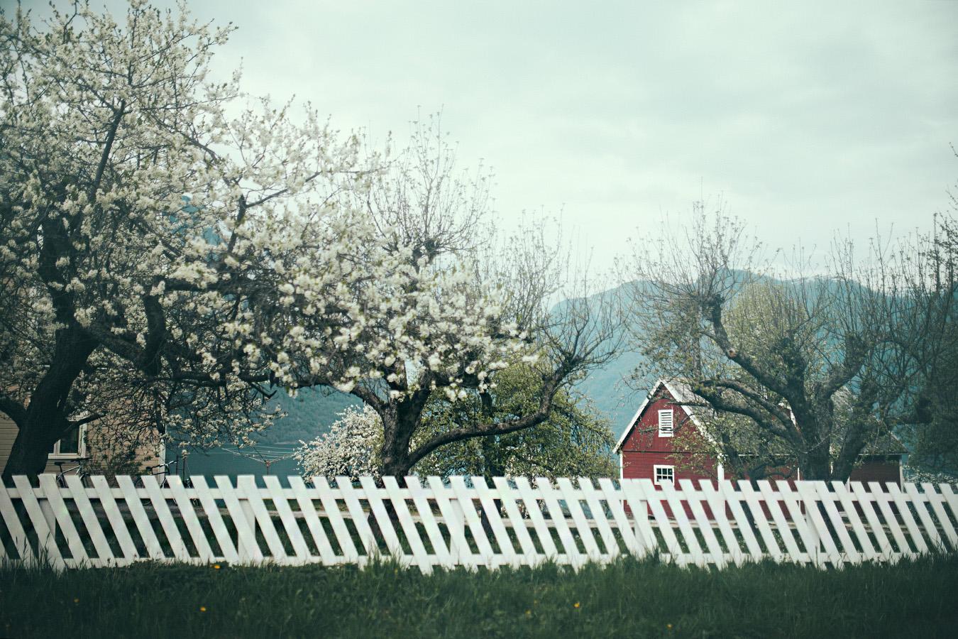 Aurland, wiosna