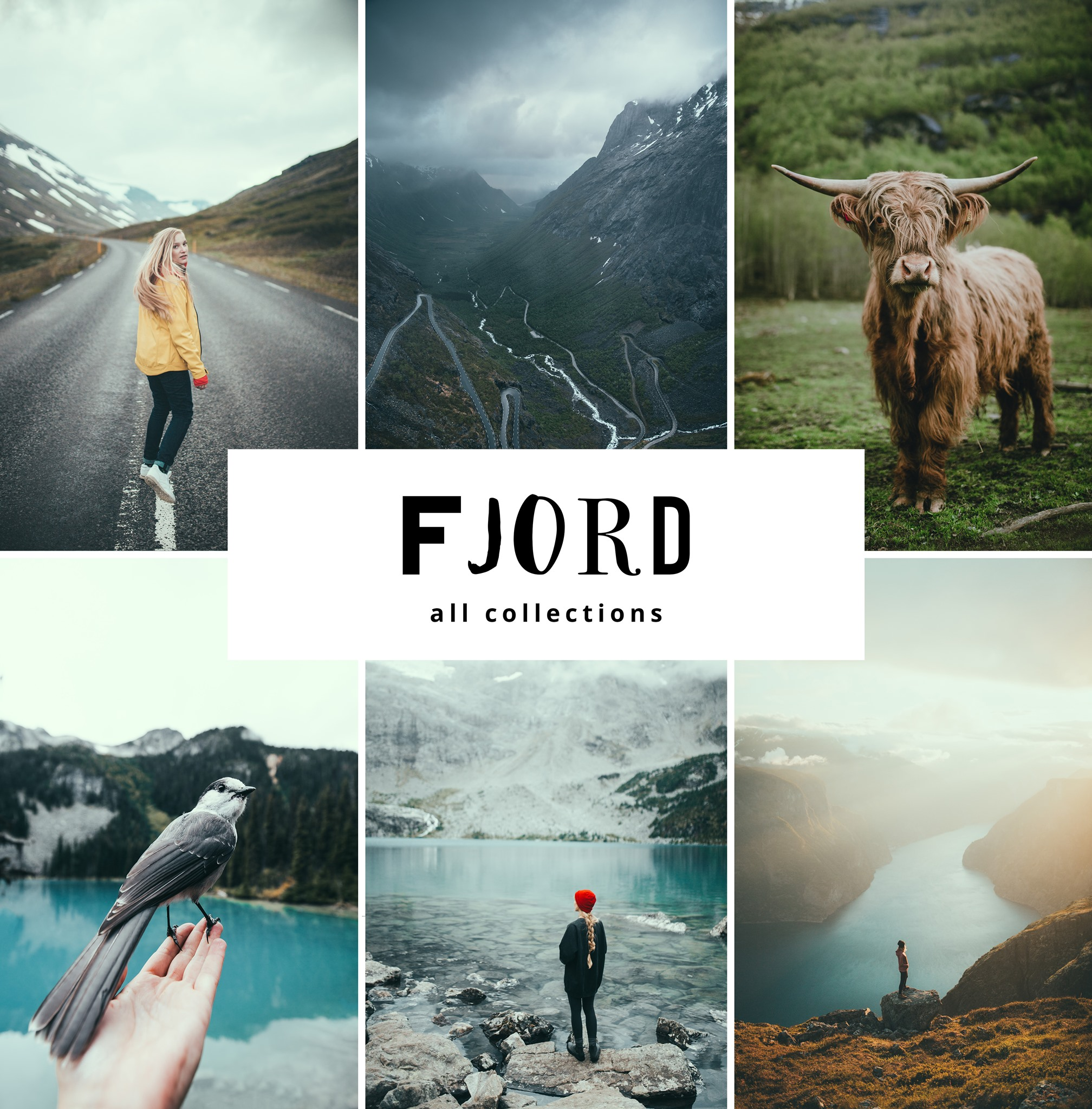 Fjord Presets All