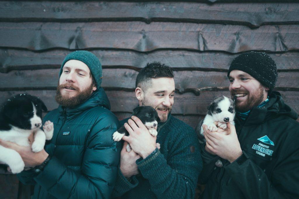 Husky puppies, Arctic Adventure Tours